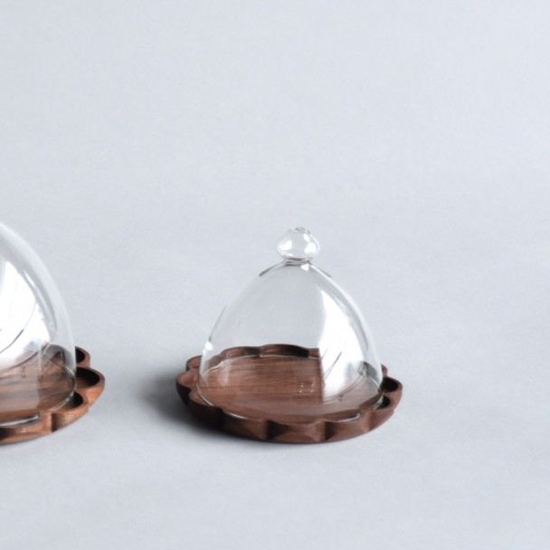 glassdomes